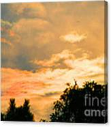Morning Rise Canvas Print