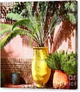 Moroccan Garden Canvas Print