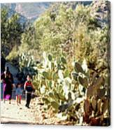Moroccan People And Cacti Canvas Print