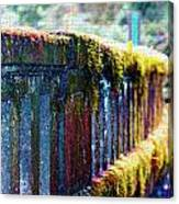 Moss Covered Bridge Canvas Print