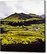 Moss In Iceland Canvas Print