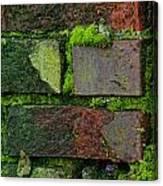 Mossy Brick Wall Canvas Print