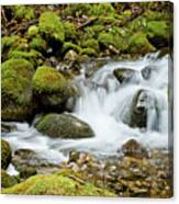 Mossy Greek Canvas Print