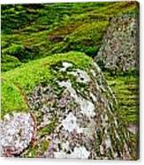 Mossy Rock Garden Canvas Print