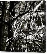 Mossy Trees In Black And White 2 Canvas Print