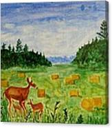 Mother Deer And Kids Canvas Print