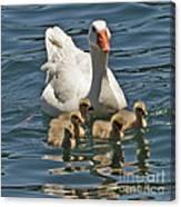 Mother Goose Plus 5 Canvas Print
