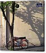 Motorcycle And Tree. Belgrade. Serbia Canvas Print