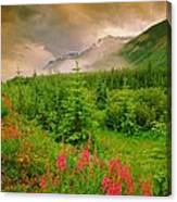 Mount Amery And Fireweed Canvas Print