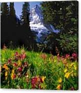 Mount Assiniboine Canvas Print