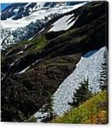 Mount Baker Floral Bouquet Canvas Print