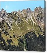 Mount Baker National Forest Canvas Print