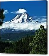Mount Hood Framed By Trees, Oregon, Usa Canvas Print
