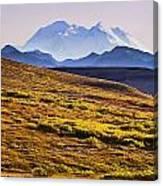 Mount Mckinley, Denali National Park Canvas Print