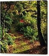 Mount Stewart, Co Down, Ireland Canvas Print