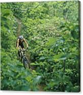 Mountain Biker On Single Track Trail Canvas Print