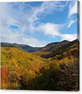 Mountain Foliage And Blue Skies Canvas Print