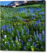 Mountain Garden Canvas Print