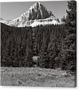 Mountain Peak Above The Tree Line Canvas Print