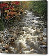 Mountain Stream In Autumn, White Canvas Print