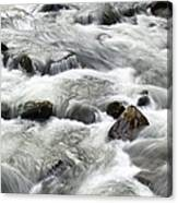 Mountain Stream Smokies Canvas Print