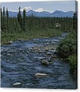 Mountain Stream With Cabin In Evergreen Canvas Print