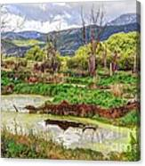 Mountain Valley Marsh - Hdr Canvas Print