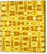 Moveonart Goldenblanket Canvas Print