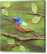 Mr. Bundting Canvas Print