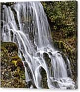 Mt Hood Cascade Canvas Print