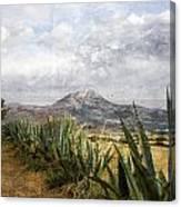 Mt Zeus Canvas Print