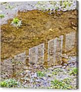 Mud Home Canvas Print