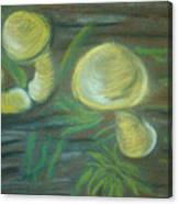 Mushrooms On A Hill Canvas Print