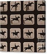 Muybridge Locomotion Horse Leaping Canvas Print