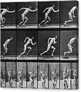 Muybridge Locomotion, Man Running, 1887 Canvas Print