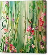 My Sweet Pea Canvas Print