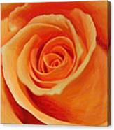 My Wonderful Rose Canvas Print