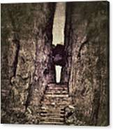Mysterious Stairway Into A Canyon Canvas Print
