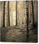 Mystery Path Canvas Print