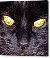 Mystic Eyes Canvas Print