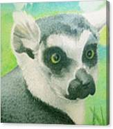 Mystic Seer Of Madagascar Canvas Print