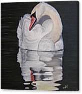 Napping Swan Canvas Print