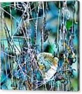 Natural Abstract Canvas Print