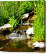 Natural Spring  Canvas Print