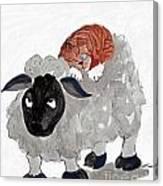 Natural Wool Cat Nap Canvas Print
