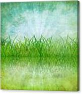 Nature And Grass On Paper Canvas Print