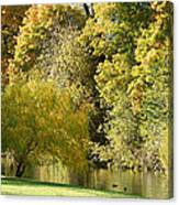 Nature Of The Fall Canvas Print