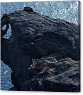 nature Protecter Santorini Island Canvas Print