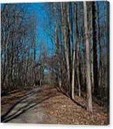 Nature Walk Canvas Print