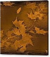 Natures Gold Leaf Canvas Print